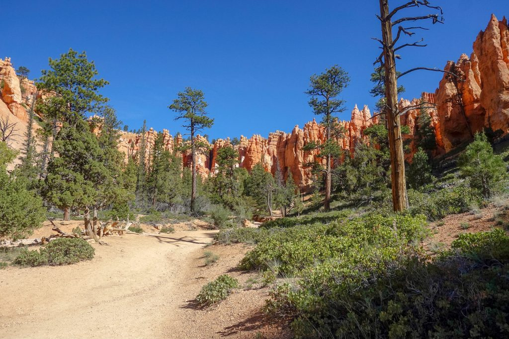Queens-Navajo Loop in Bryce Canyon