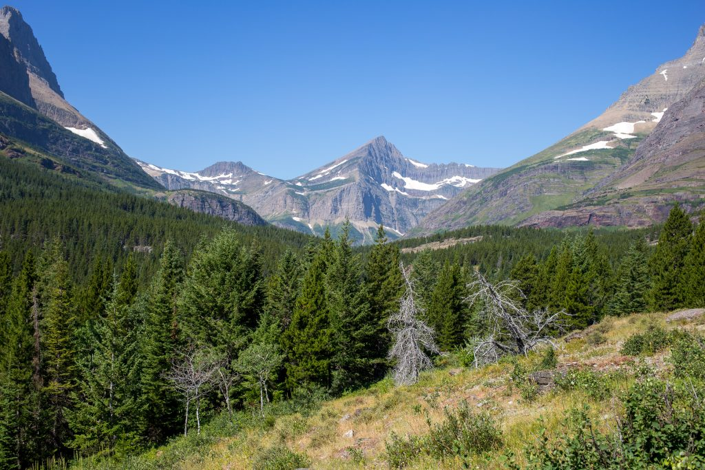 Uitzicht vanaf Swiftcurrent Pass Trail in Glacier National Park