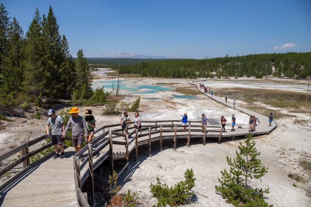 Boardwalk in Norris Geyser Basin, Yellowstone National Park