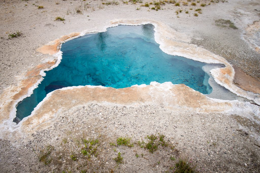 Blue Star Spring, Yellowstone National Park
