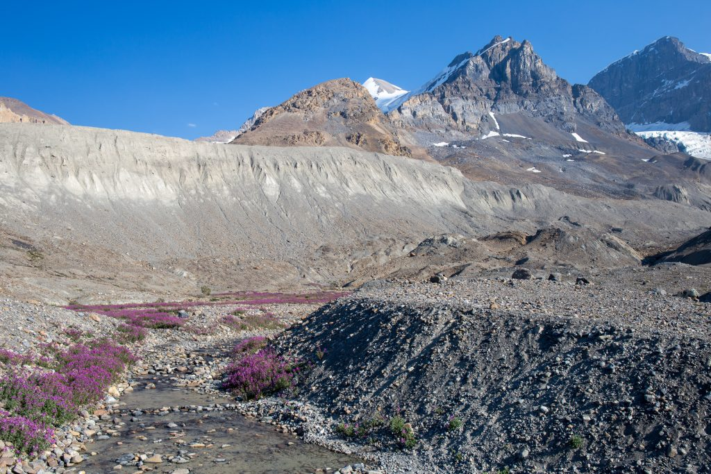 Toe of the Athabasca Glacier Trail